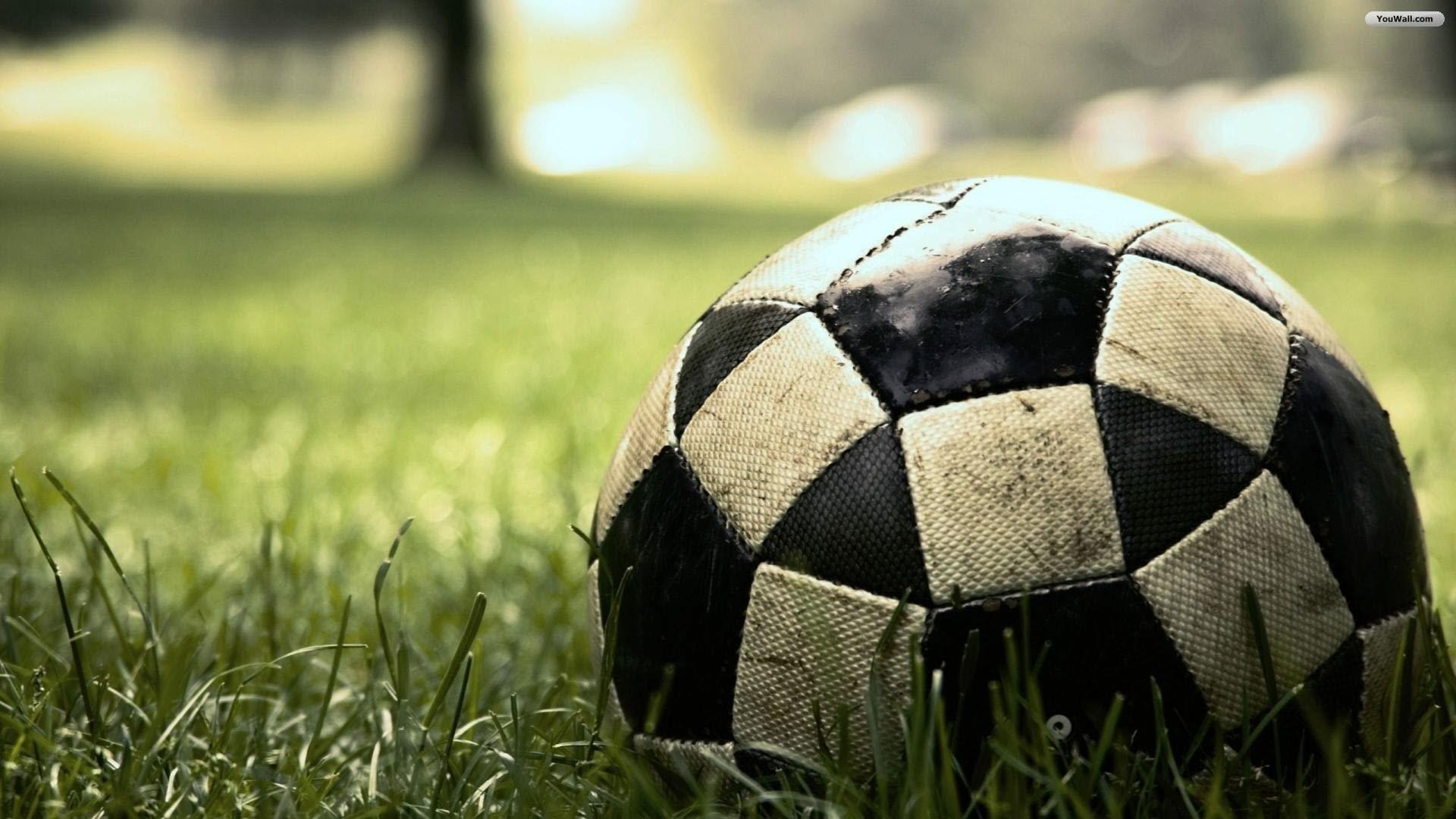 Situs Agen Bola Sportsbook Terpercaya